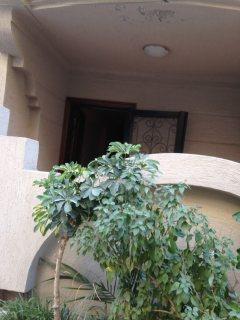 بالصور شاليه  بحري بشاطىء النخيل ( 6 اكتوبر) بحديقة خاصة