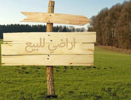 ارض للبيع فى ابو صوير