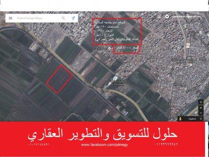 #ارض_للبيع .. #ارض امام #جامعة_السلاب