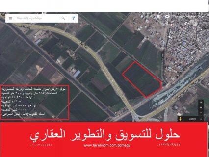#ارض_للبيع .. بجوار #جامعة_السلاب .