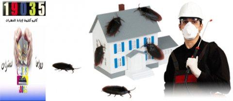 طرق حديثة فى ابادة الحشرات 01200044572 / 19035