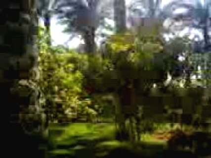 01111498783للايجار فيلا الهرم متميزة طريق ترعة المنصورية الرئيسي