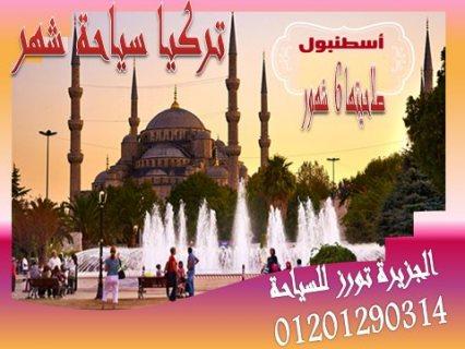 أستعد لحصولك معنا على فيزا تركيا سياحة شهر وصلاحيتها 6 شهور