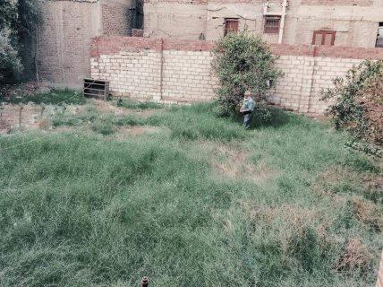 عمارة + حديقة فى قرية بهنباى
