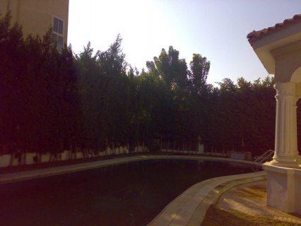 فيلا راقية للايجار مفروشة بيفرلي هيلز بحمام سباحة