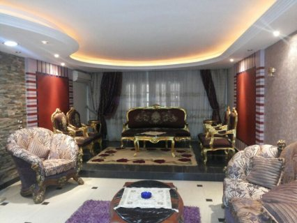 for rent 240m  At Nasr City 600pounds per month
