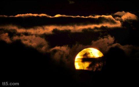 أنامل تعزف على الوتر : خذنى بعينيك و أهرب أيها القمر 01127498250