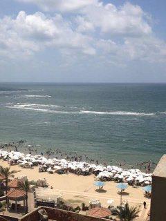 شقه للبيع فى العصافرة على البحر  الاسكندرية