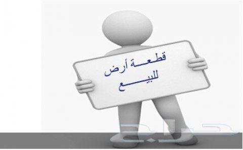 عرض خاص لهواة المشروعات التجارية وبناء المدارس الخاصة