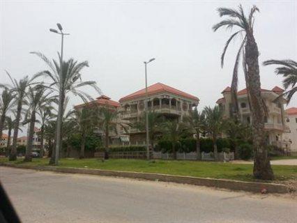 قطعة ارض بحرى غربى بالامتداد العمرانى لراس البر التابع لمجلس الم