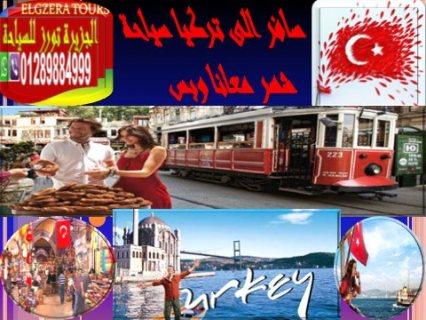 لراغبى السفر الى تركيا سياحة شهر صلاحيتها 6 شهور