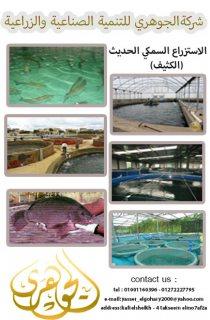الاستزراع السمكى من شركة الجوهرى