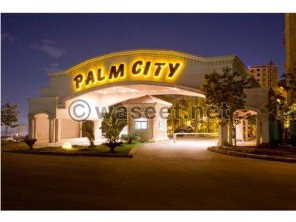 شقه للبيع فى كمبوند Palm City Katamya