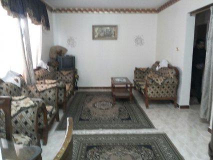 للتميز شقة مفروشة للايجار باول عباس