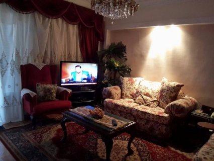 للتميز والفخامة شقة مفروشة للايجار بشارع هشام لبيب450ج