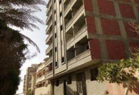 الاسكندرية_شارع الهانوفيل الرئيسى فوق مطعم جاد