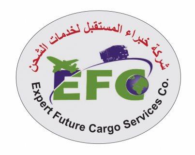 شركة خبراء المستقبل شحن بضائع من دبي الى  مصر 00971508678110