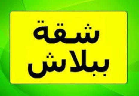 لهواة التميز و الرقى بنت هاوس للبيع بكمبوند زايد ديونز بمدينة الشيخ