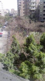 شقة في المهندسين بارقي مكان من احمد عرابي بالتقسيط