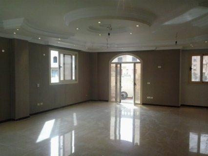للايجار السنوى للعائلات الراقية شقة 135م بجمال عبد الناصر راسا