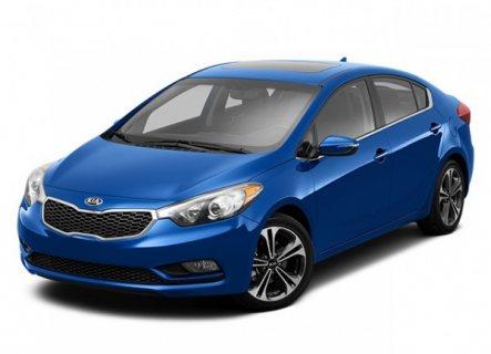 الان يمكنك استثمار سيارات لدى شركة ادارة مشروعات بيتروليه كبري