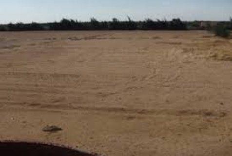 قطعة ارض للبيع بالتوسعات الشمالية منطقة 2000قطعة بالقرب من بورتو اكتوبر456م