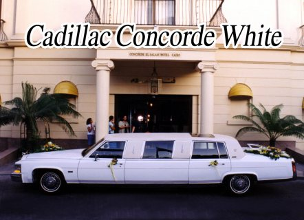 صور limousine cadillac rental for wedding 1