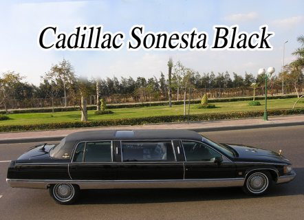 صور limousine cadillac rental for wedding 5