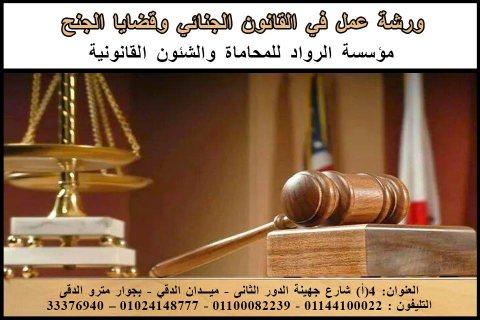 ورشة عمل في القانون الجنائي وقضايا الجنح