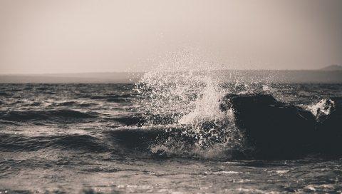 الحق الفرصة وصيف معانا لحد ما تمتلك شاليهك بالساحل