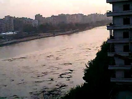 شقة للإيجار بتقسيم المعلمين بطلخا 250 م تطل على النيل مباشرة