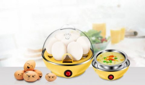 Buy Electric Egg Boiler Poacher