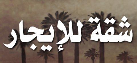 شقة 250م للأيجار بشارع متفرع من عباس العقاد