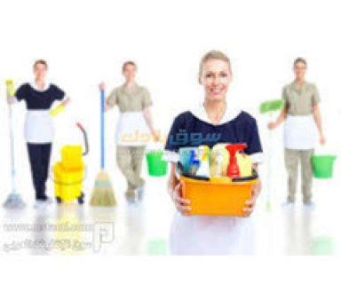 الوصيفة لكافة الخدمات والأحتياجات المنزلية من شغالة و بيبي سيتر 01151800999