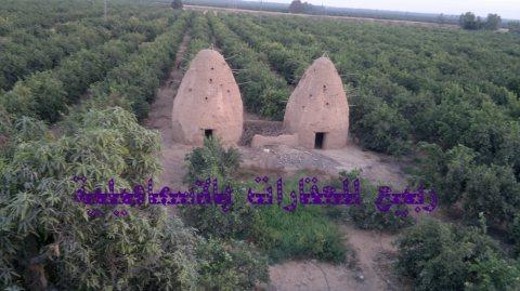 عقارات الاسماعيلية مزارع للبيع الاسماعيلية مسجلة 01226668997