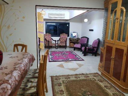 شقه مفروشه للايجار بين احمد فخري وحسن المأمون