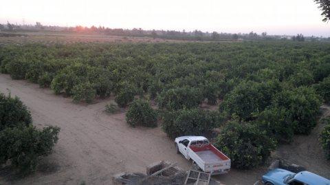 اراضى زراعية للبيع الاسماعيلية سرابيوم عقارات الاسماعيلية 01226668997