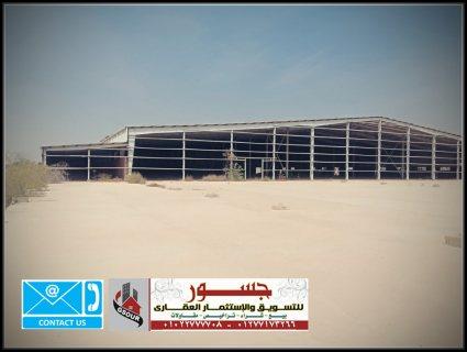 مصنع للبيع فى برج العرب الجديدة 51000م2