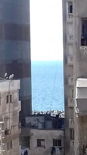 شقه ايجار سنوى بالفرش ترى البحر 80 متر سيدى بشر