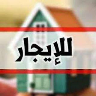 شقه ايجار بشارع جميل بنها
