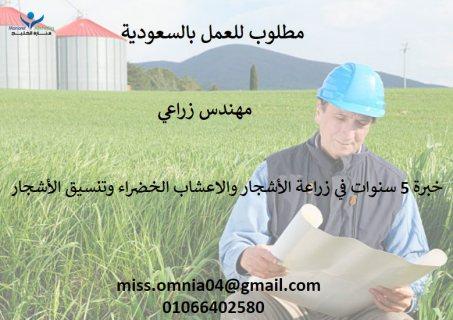 مطلوب للعمل بالسعودية (ابها)