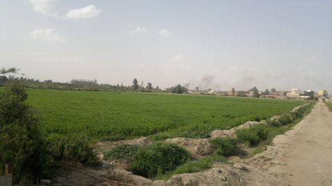 اراضى زراعية  للبيع الاسماعيلية مزارع للبيع الاسماعيلية  محافظة الاسماعيلية