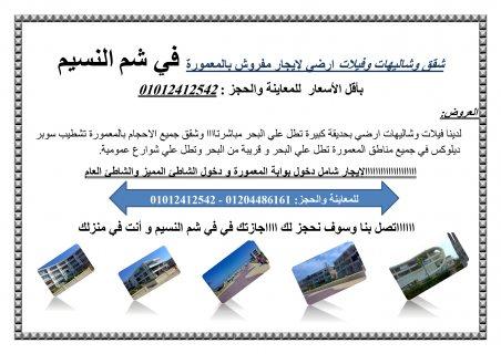 شقق وشاليهات وفيلات ارضي لإيجار مفروش بالمعمورة في شم النسيم