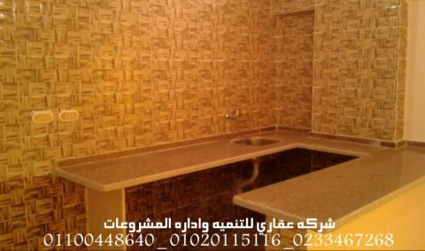 تشطيبات مباني  (شركه عقاري للتنميه واداره المشروعات)01020115116