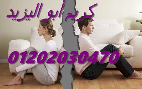 افضل محامي في القاهره والاسكندريه(كريم ابو اليزيد)01202030470