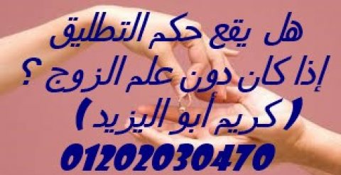 اشهر محامي في قضايا الخلع وزواج الاجانب(كريم ابو اليزيد)01202030470
