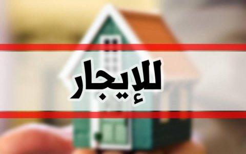 محل للايجار في بنها بشارع الامل