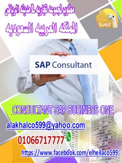 Consultant sap business one