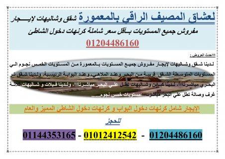 اااالحق شقة لإيجار قانون جديد بشارع السنترال بالمعمورة بأقل سعر 01012412542