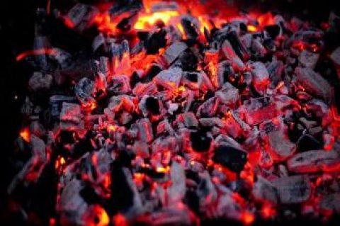 تصدير وبيع الفحم النباتي بانواعه